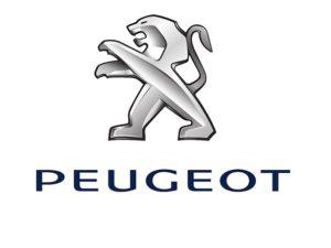 Oglinda exterioara Peugeot