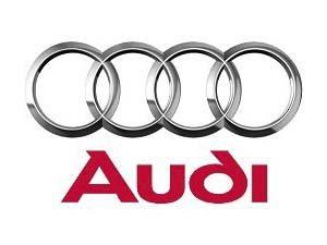 Oglinda exterioara Audi