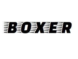 Oglinzi si componente oglinda Peugeot Boxer