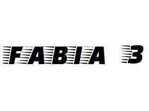 Oglinzi Skoda Fabia 3 an 2014-2020