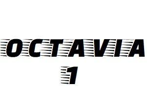 Oglinzi Skoda Octavia 1 an 1996-2010