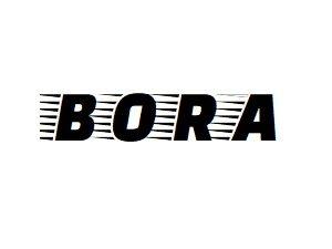 Oglinzi VW Bora