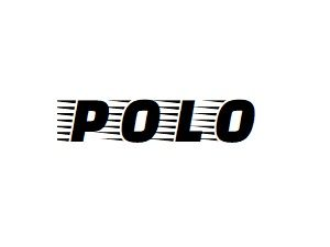 Oglinzi VW Polo