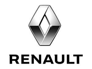 Oglinda exterioara Renault