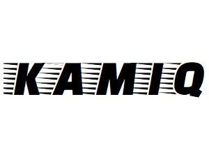 Oglinzi Skoda Kamiq 2019-prezent